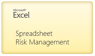 Introduction to Spreadsheet Risk Management